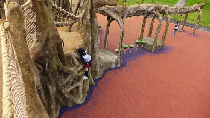 SF Zoo.Playground.Banyon Tree.banyan side with kids.jpg
