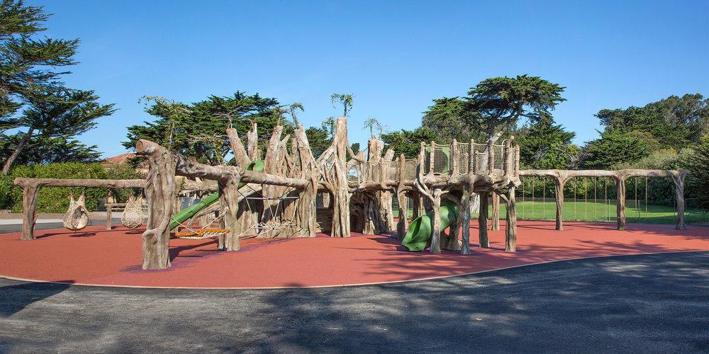 SF Zoo.Playground.Banyon Tree.IMG_1107_1108Pano12x6-X3.jpg
