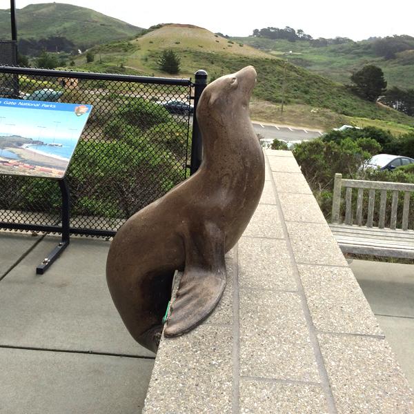 Marine Mammal Center : Exhibits and Sculptures  Sausalito, CA
