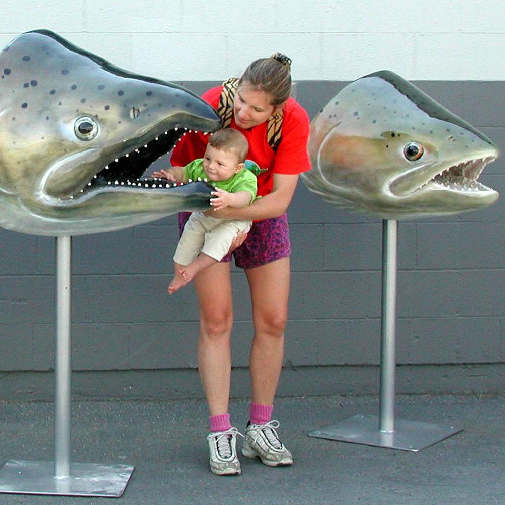 Nimbus Fish Hatchery: Insights and Ideas Exhibit Design  Rancho Cordova, CA