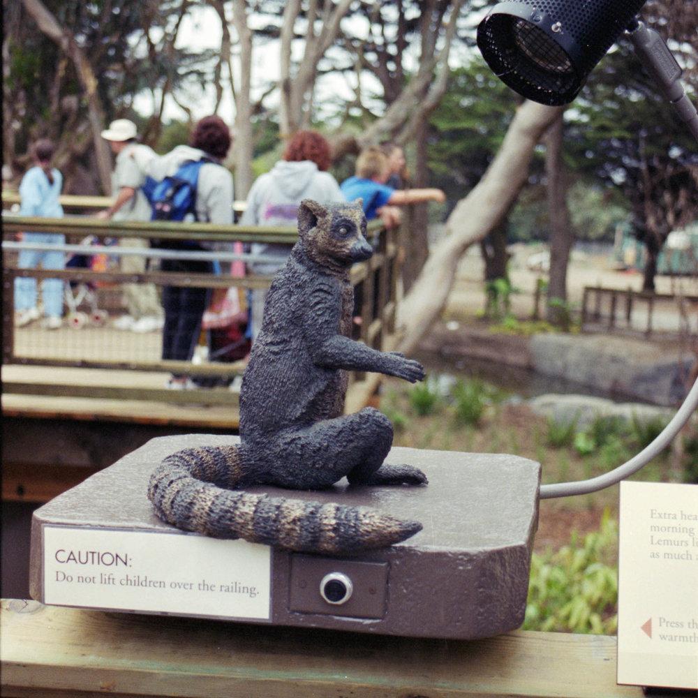 San Francisco Zoo & Gardens : Bronze Lemur Sculpture  San Francisco, CA