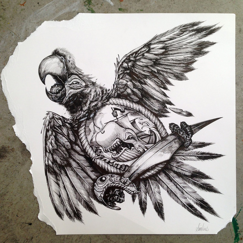 Foo Fighters Parrot (framed) 14 x 14 in. Ink INQUIRE