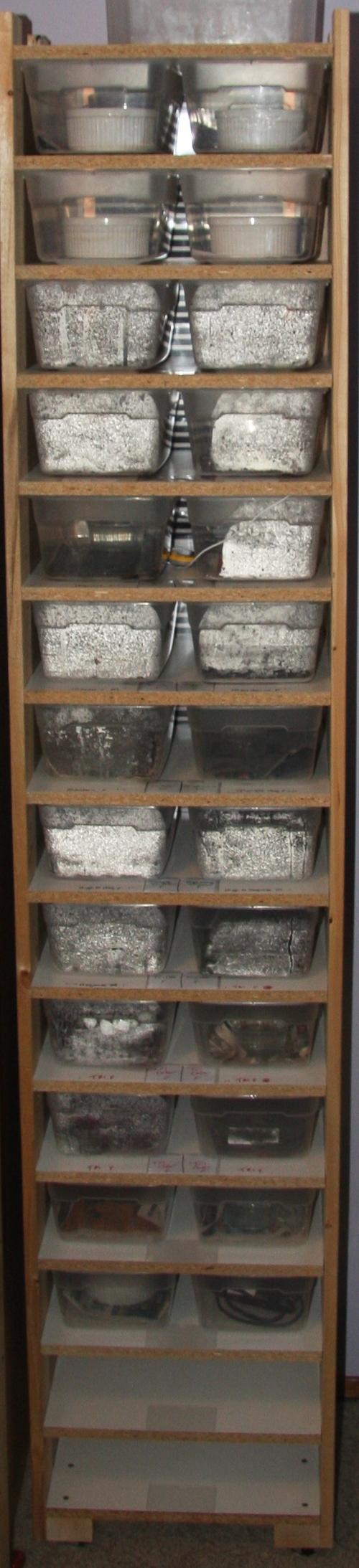 30 bin hatchling rack system