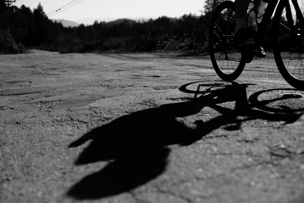 Shadow2.9.jpg