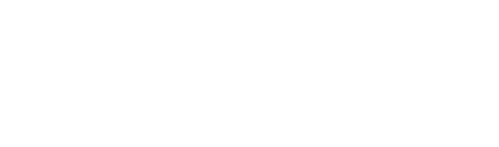 IEEE_logo_white.png
