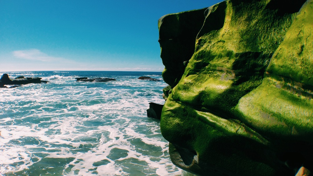 Rocks_Austin.jpg