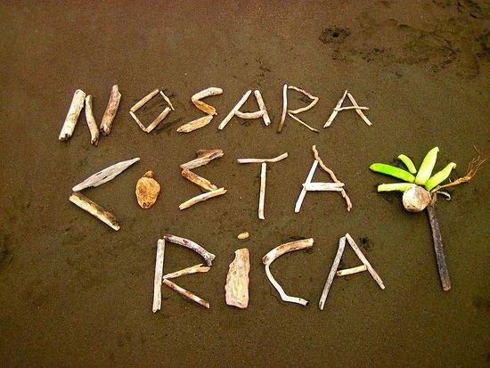 nosara-1_orig.jpg