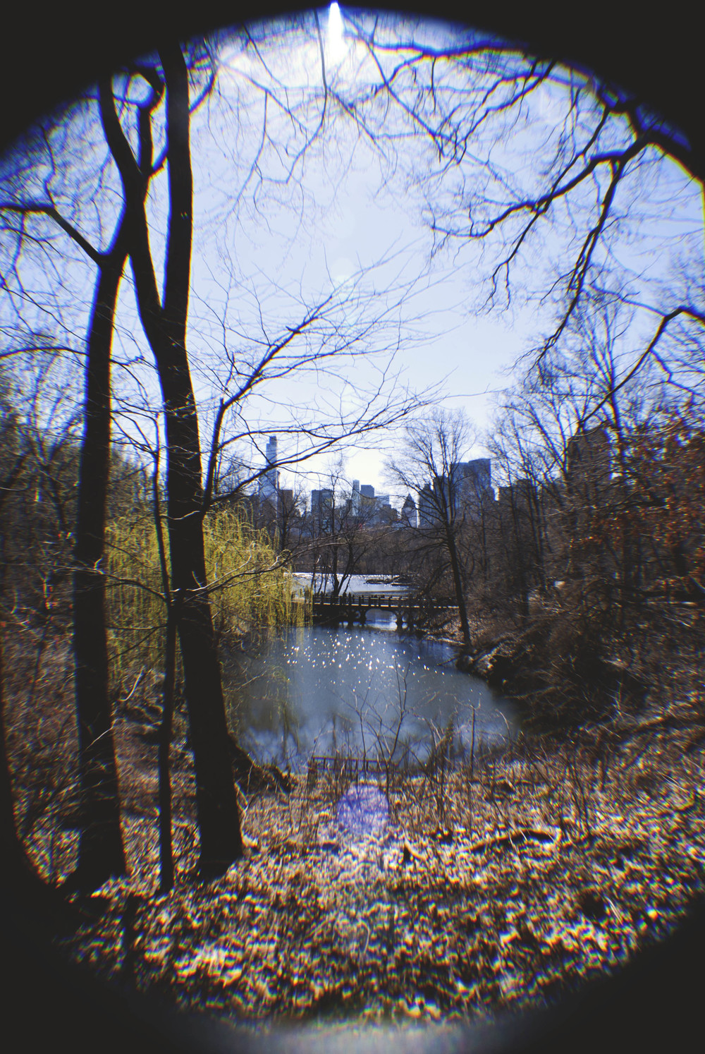 NYC033.jpg