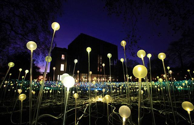 Bruce-Munro-5000-flowering-lights-london-2.jpg