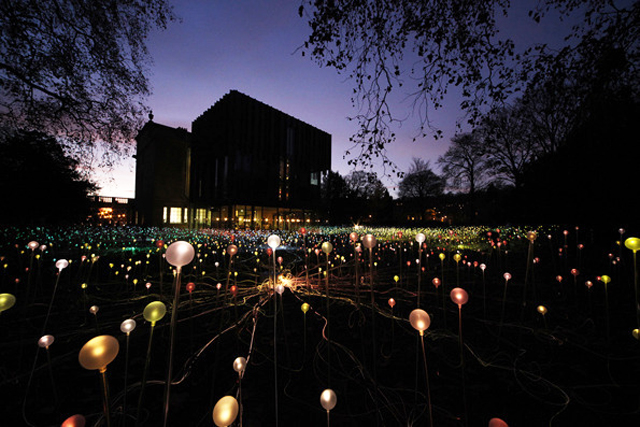 Bruce-Munro-5000-flowering-lights-london-3.jpg