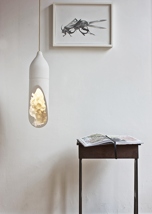 Seltanica-Lamp-Light-Fixture-Cmmwlth-2.jpg