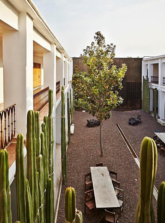 Azul-Oaxaca-Hotel-Mexico-Esware-Design-9.jpg