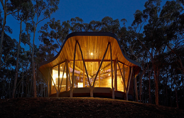 Trunk-house-paul-morgan-architects-tree-house-6.jpg