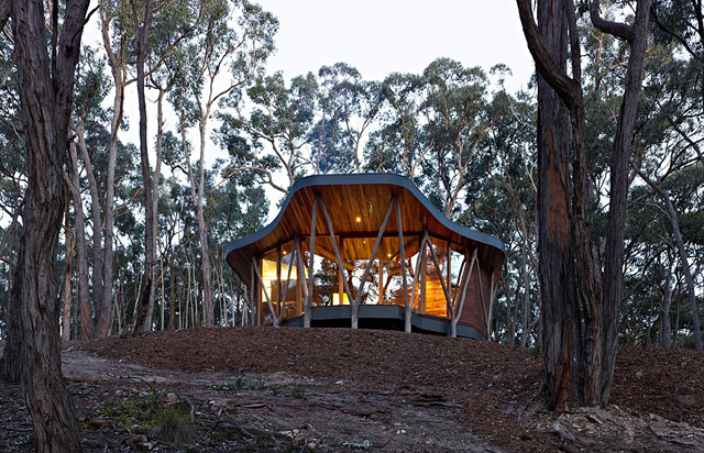 Trunk-house-paul-morgan-architects-tree-house-7.jpg