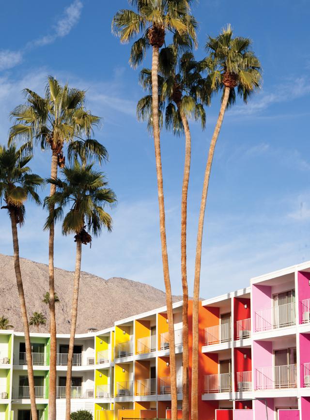 Saguaro-Palm-Springs-3.jpg