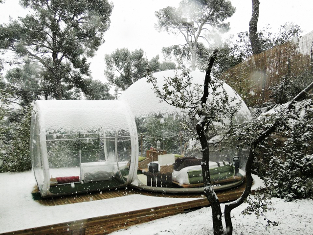 Bubble-Hotel-France-treehouse-2.jpg