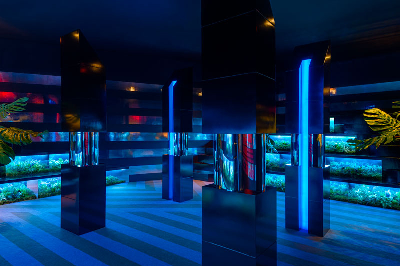 Rafael de Cardenas Stepin One 2 Installation at The MAD Biennial