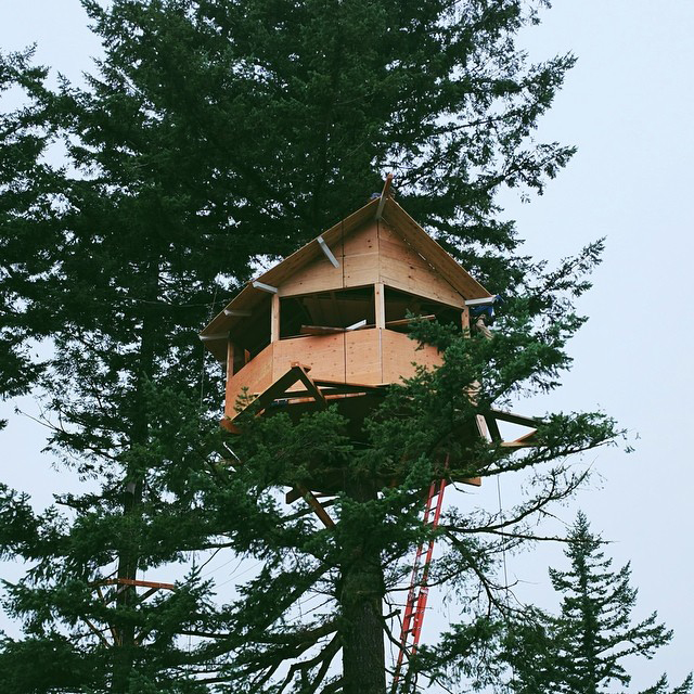 Treehouse Living on Foster Huntington Instagram