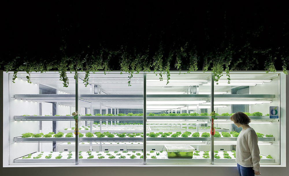 Cheongshim Water Culture Center by UnSangDong Architects