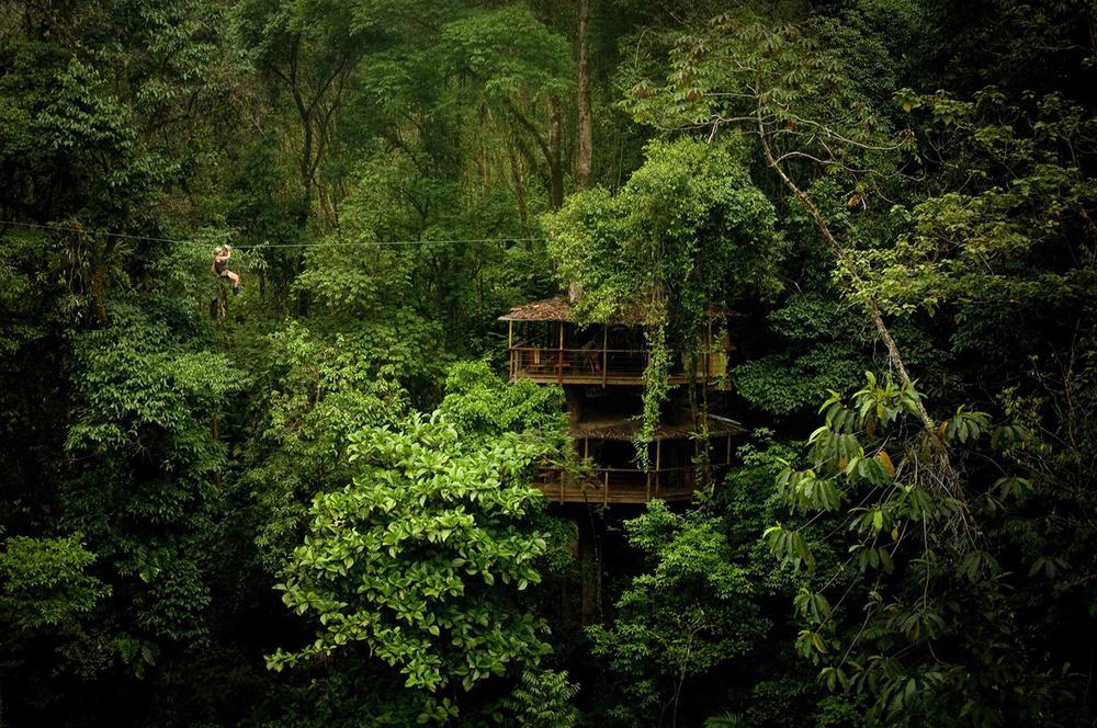 Finca Bellavista Treehouse Community in Costa Rica