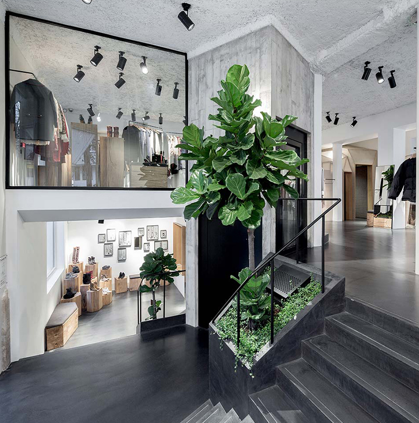 Paris store || Design: Cigue || Materials: concrete, plaster, steel, oak and felt  || Plants: Ficus Elastica