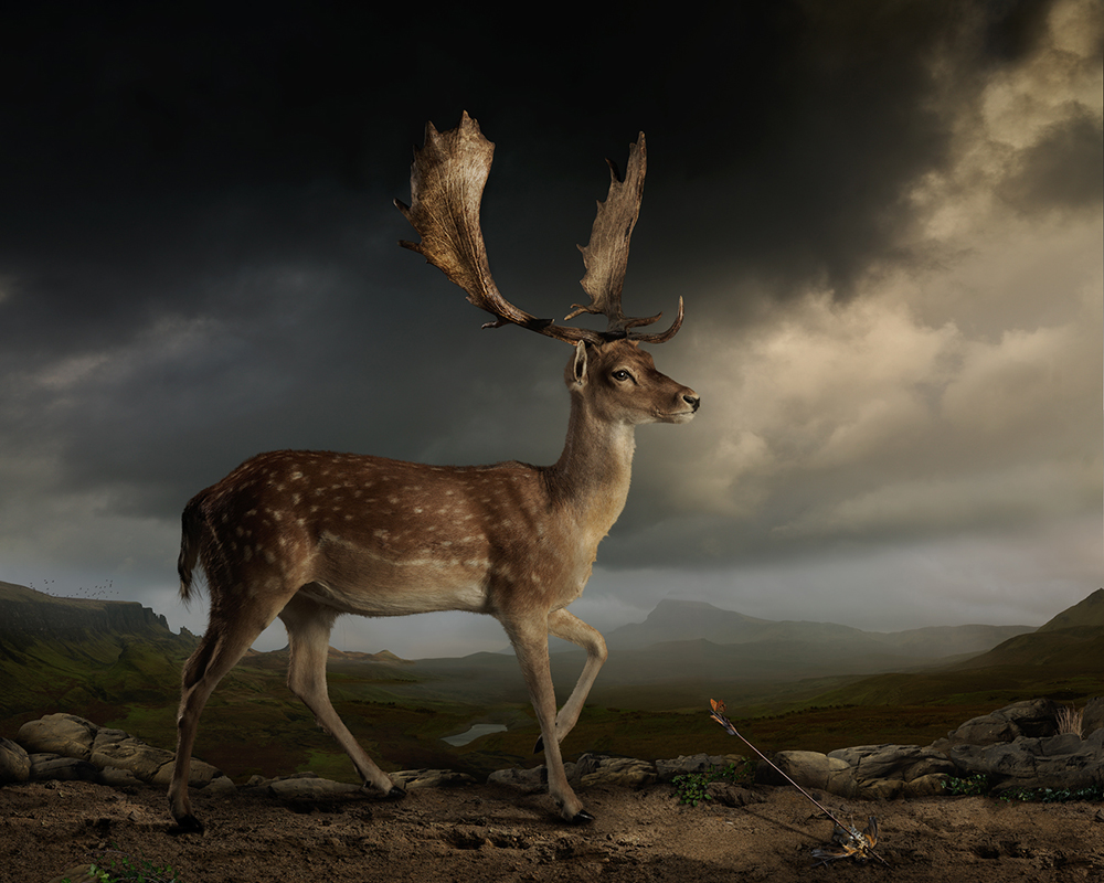 Joseph McGlennon wins Bowness prize for 'powerful' and 'mysterious' photo