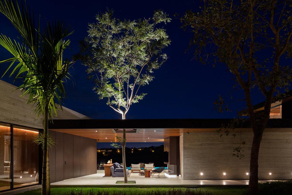 Fazenda Boa Vista tree