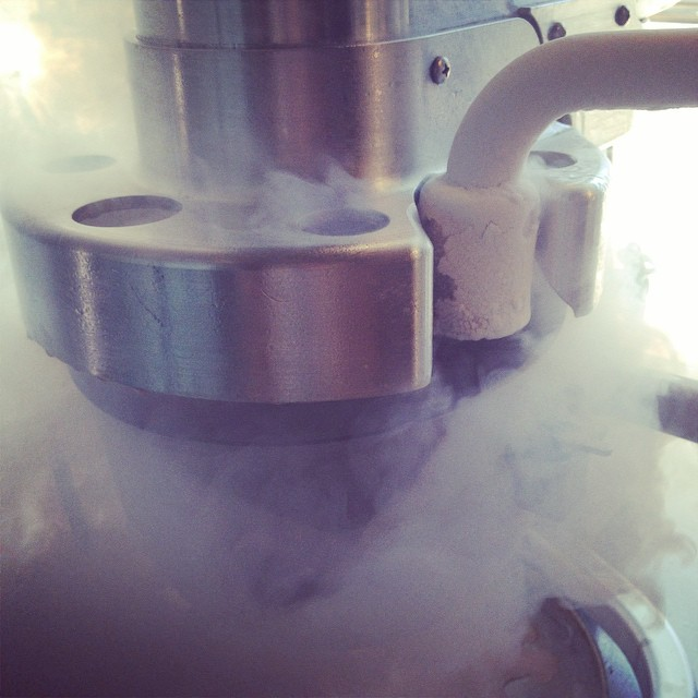 Ice Cream in the making...#churn2 #icecream #LN2 #liquidnitrogen #milk #sugar #science #magic #love #boston #bostoneats #foodie #foodporn  #cambridge #harvardsquare #harvard #shippingcontainer #sweet #sweettooth #delish #yummy #instasweets #instafood #fresh #icy #improperbostonian