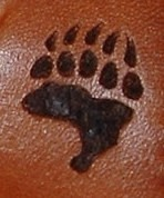 Circle M-Brand heat engraving Bear Paw.JPG