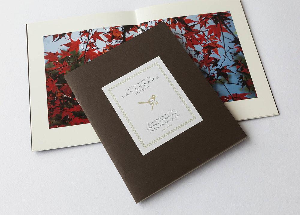 solid_ground_booklet_1500x1076.jpg