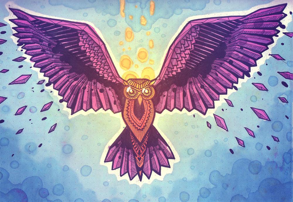 OWL_4.jpg