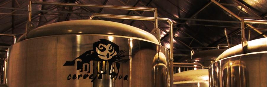 Festa na cervejaria e Festivalito são os dois eventos programados (Foto: Divulgação)