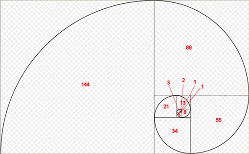 Representação da proporção áurea(Foto: divulgação)