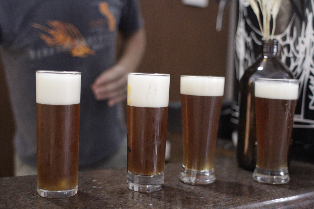 Os insumos utilizados na produção da bebida foram cultivados (malte e Lúpulo) e encontrados (Leveduras) em terras nacionais, mais especificamente no Rio GRande do Sul (Foto: Altair Nobre)