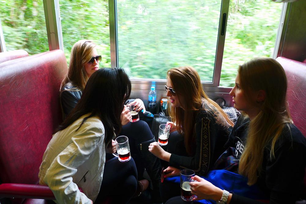 Realizado há três anos, o Beer Train surgiu como uma maneira criativa de unir o prazer da bebida com a vista única da Serra do Mar (Foto: Divulgação)