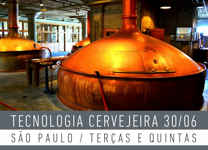 Aulas são ministradas na sede do Instituto da Cerveja, na capital paulista, até 13 de outubro (Foto: Divulgação)