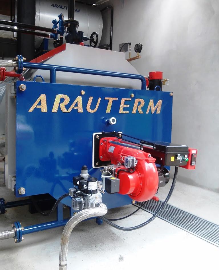 Nova caldeira tem capacidade de 1.200 Kg vapor/hora, enquanto a antiga era de 300 (Foto: Divulgação)