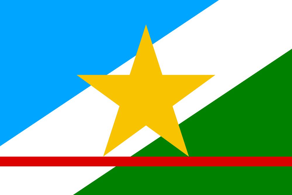 Bandeira-Roraima