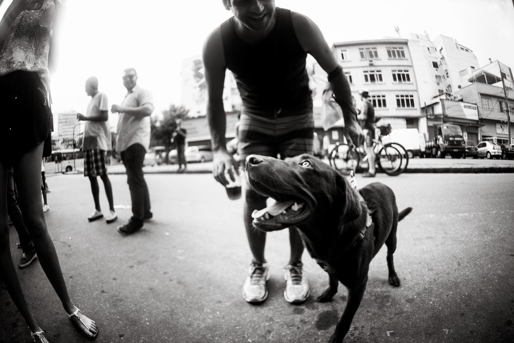 Livro da jornalista e fotógrafa Cris Berger indica lugares para curtir no Rio na companhia do pet (Foto: Divulgação)
