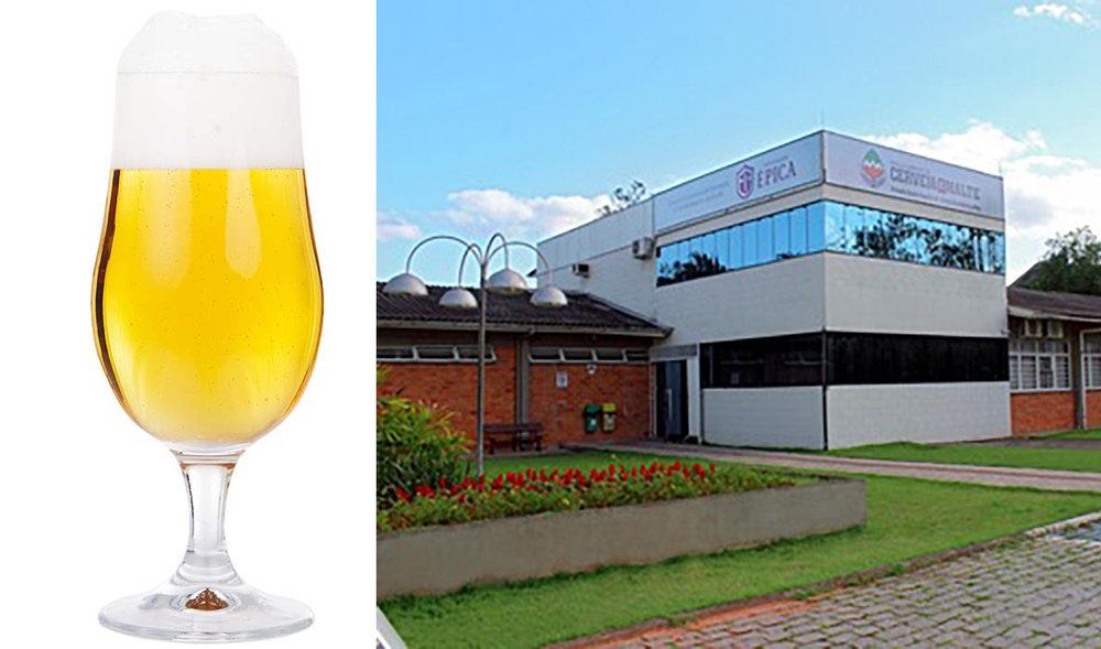 Belgian Blond Ale foi o estilo escolhido para a cerveja comemorativa a ser apresentada em feira durante o Festival Brasileiro da Cerveja (Fotos: Divulgação)