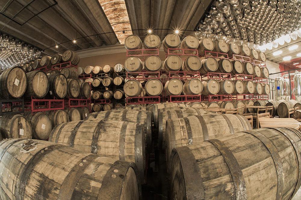 O ateliê é um complexo dedicado ao conceito de cerveja arte da marca (Foto: Divulgação)