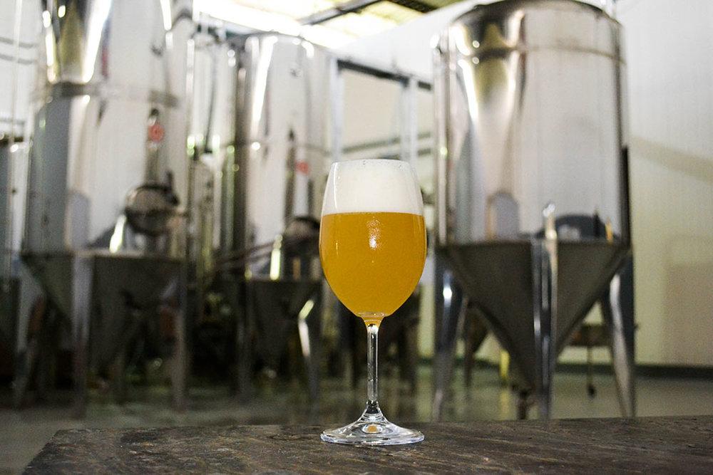 Chope Witbier é a aposta da Sun Hop Brewery (Foto: Divulgação)