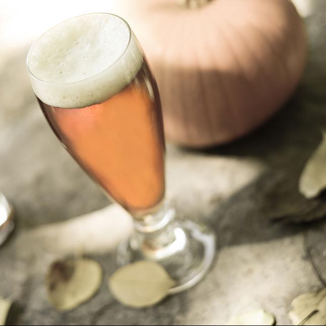 Cucurbito Pepo (Pumpkin Ale)