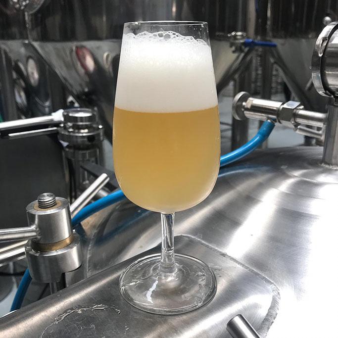 """A primeira das três cervejas é uma """"Hop Sour Lager"""" com DH de Mosaic (Foto: Divulgação)"""