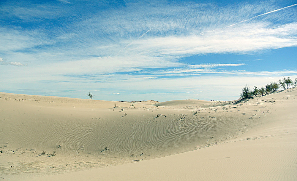 The dunes in Monahans, Texas.