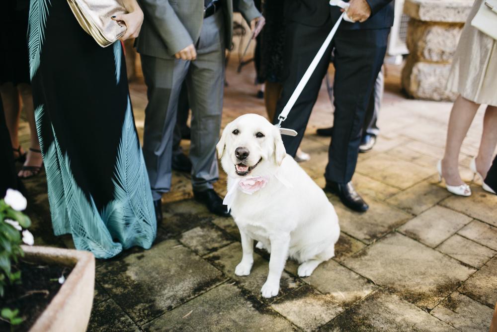 Brookleigh-Estate-Wedding028.jpg