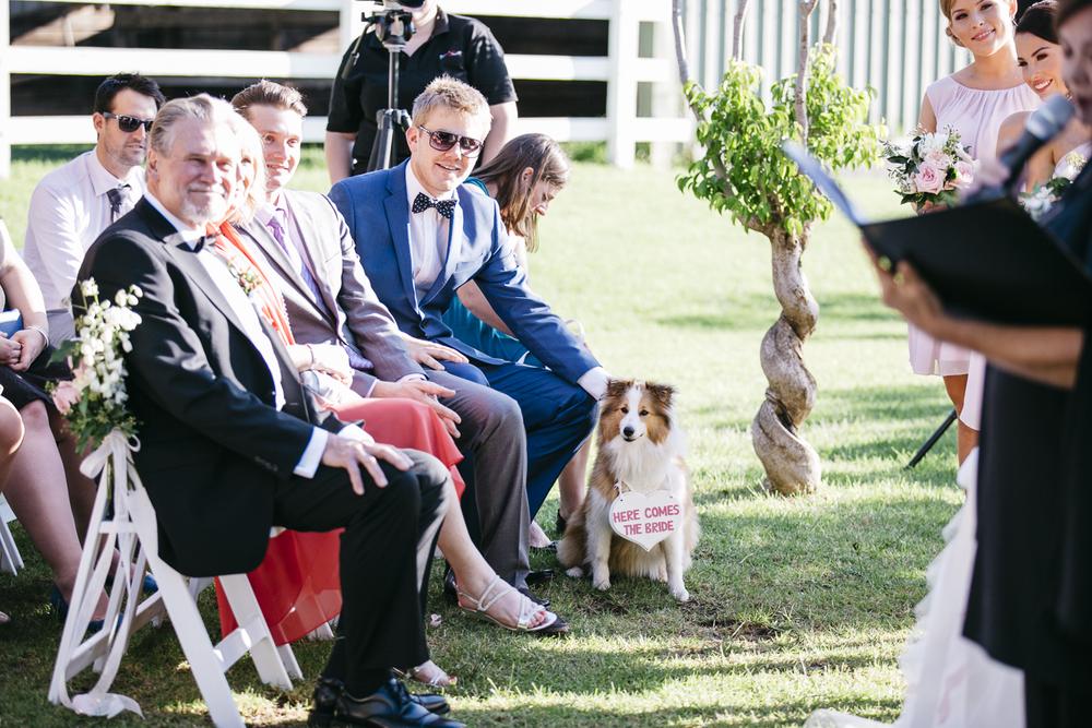 Brookleigh-Estate-Wedding040.jpg