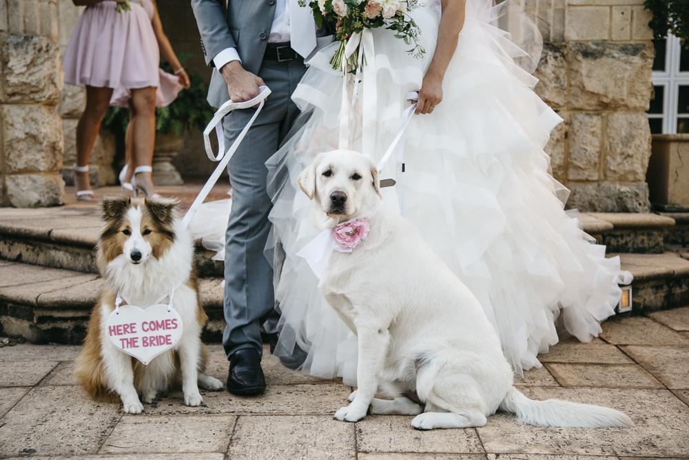 Brookleigh-Estate-Wedding050.jpg