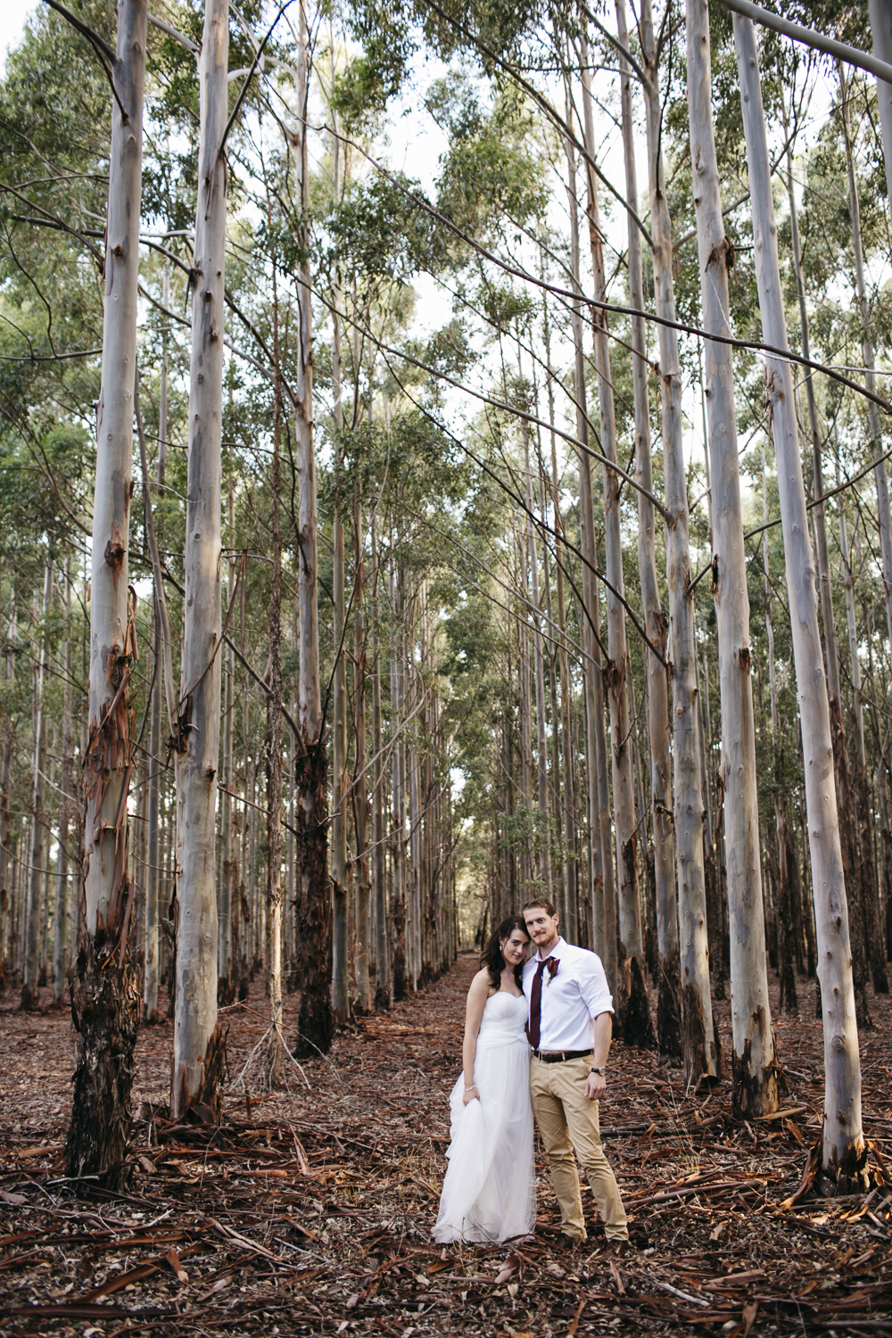 bride and groom in forest near margaret river