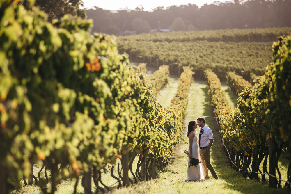 bride and groom at wills domain vineyard